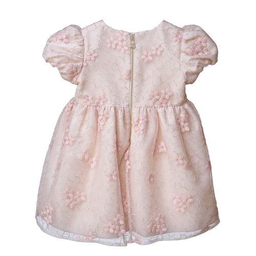 Baby Girls OFF WHITE/PINK EMBR LUREX WOOL ON NET DRESS