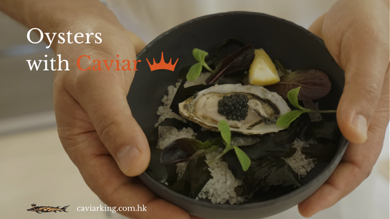 Oysters with Caviar | Caviar King