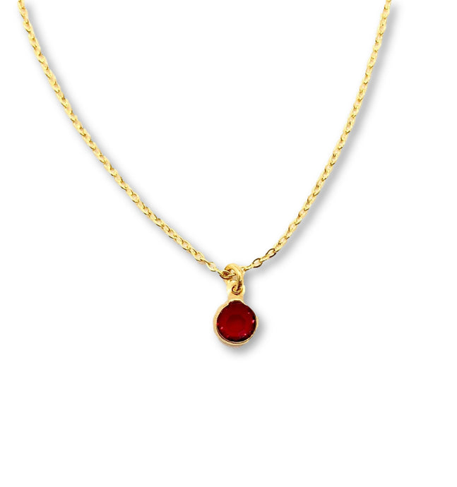 January Birthstone Necklace - AR TodayCharm Jewelry Company