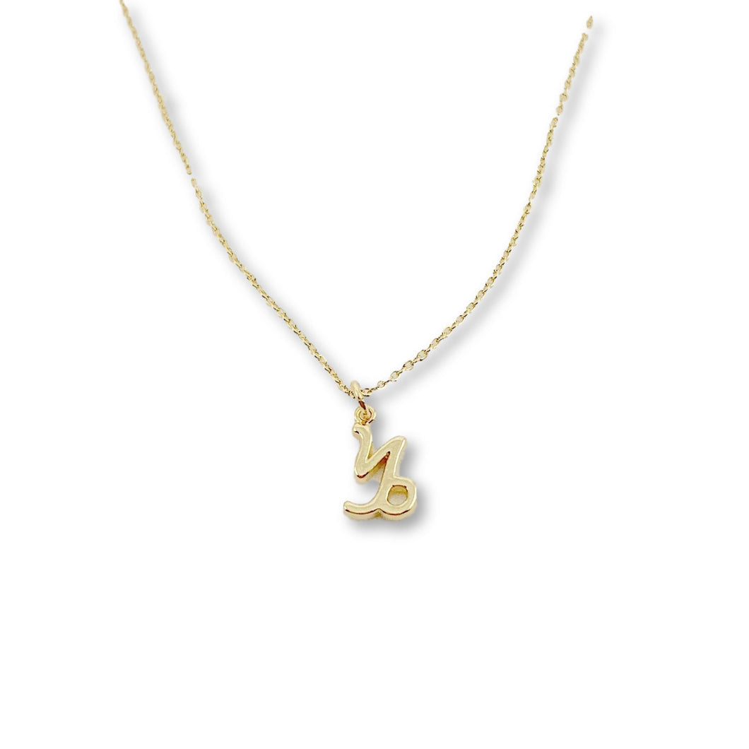 Capricorn Zodiac Necklace - AR TodayCharm Jewelry Company