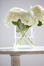 Glass Hurricane Vase - Gift Tree