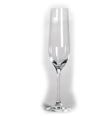 Gusto Champagne Flute (Set of 6) - Gift Tree