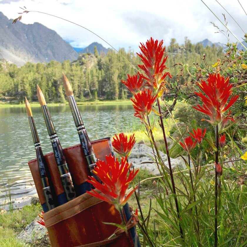 Wild Plein watercolor brush set with vibrant red Indian paintbrush plant in the mountains