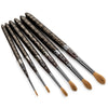 Factory 2nds - Cheetah Series - 6 Brush Set (no canister) - Wild Plein