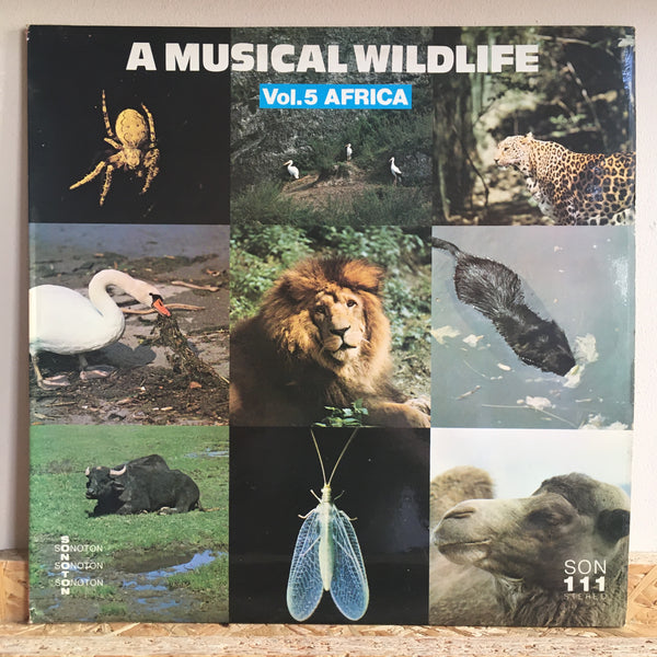 Claude Larson ‎– A Musical Wildlife Vol.5 Africa