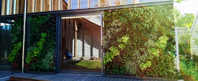 Boost your LEED credits with decorative green walls