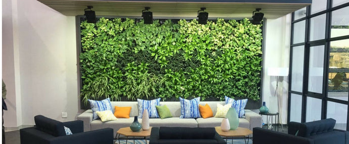 5 green wall installation problems the GrowUp system can solve