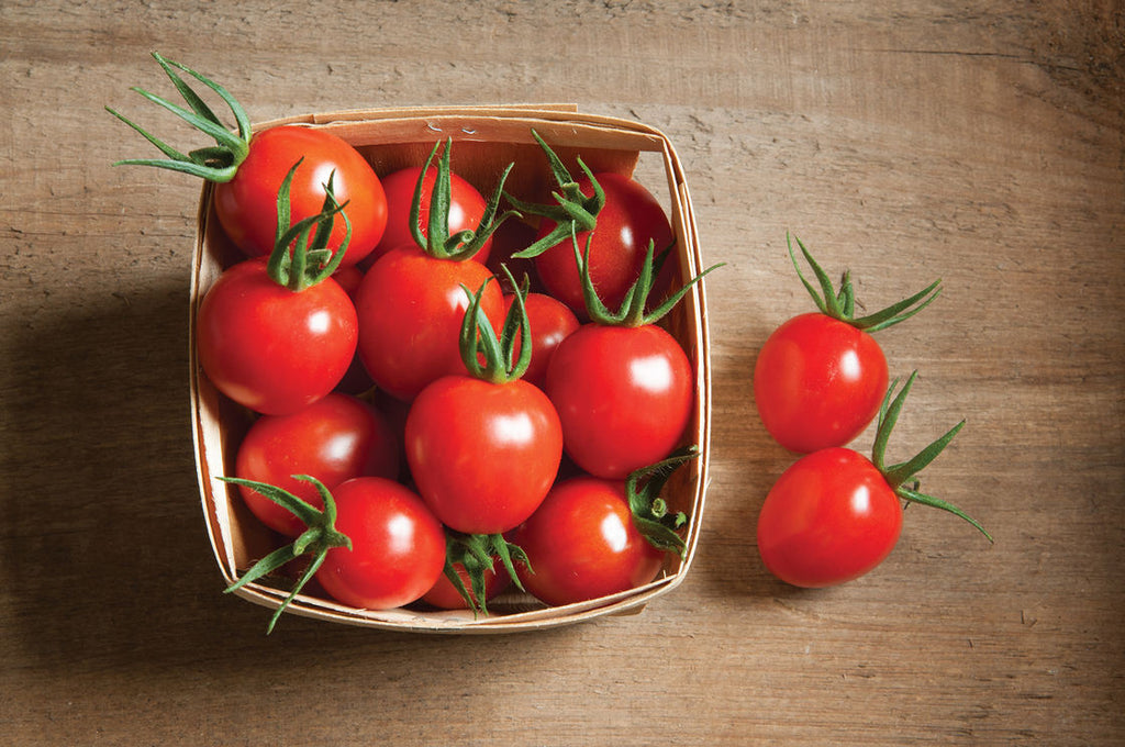 Growup vertical farming | cherry tomatoes