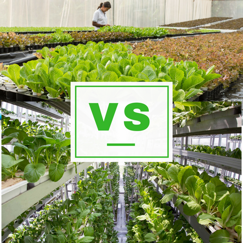 Horizontal vs Vertical farming