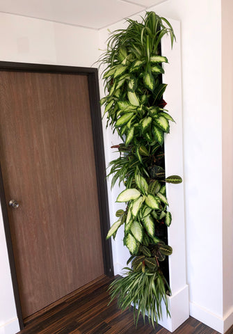 small office space gardening