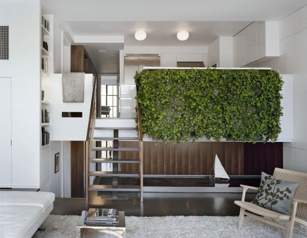 Growup vertical farming | green wall in the living room