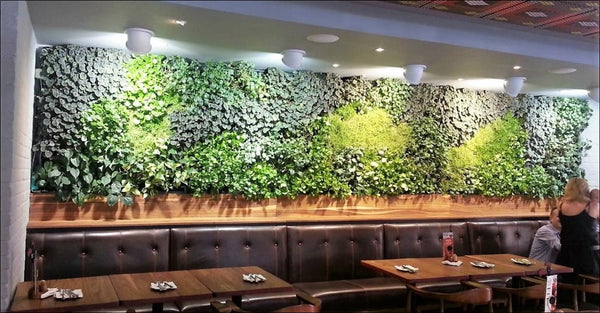 Green walls in restaurants