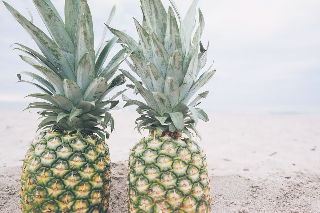 Growup vertical farming | pinapples on the beach