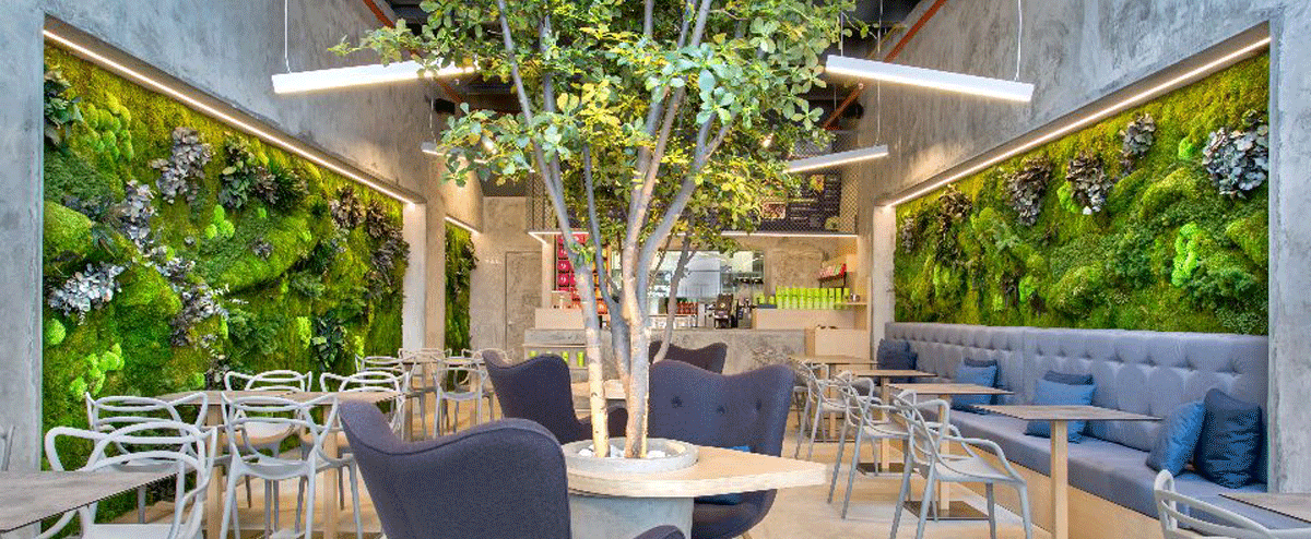 Restaurants with green walls