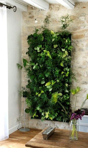Growup vertical farming | decorative indoor green wall