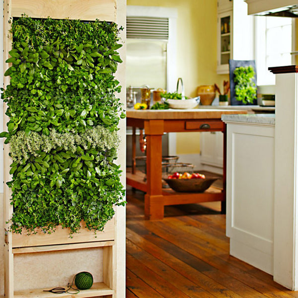 Growup vertical farming | vertical indoor herb garden