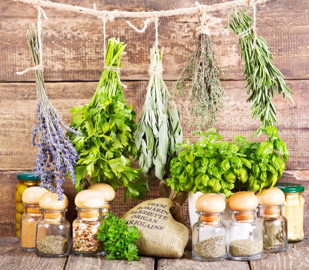 Growup vertical farming | dried herbs in the kitchen
