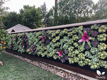 GrowUp Greenwall Kit - 8' Wide x 7' Tall - Recirculating Outdoor