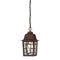 "Nuvo Banyan 1-lt 11"" Tall Outdoor Hanging Lantern"