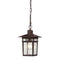 "Nuvo Cove Neck 1-lt 7"" Outdoor Hanging Lantern"