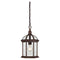 "Nuvo Boxwood 1-lt 8"" Outdoor Hanging Lantern"