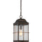 "Nuvo 60-5836 Howell 1-lt 9"" Outdoor Hanging Lantern"