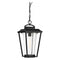 "Nuvo 60-6514 Lakeview 1-lt 9"" Outdoor Hanging Lantern"