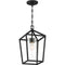 "Nuvo 60-6594 Hopewell 1-lt 9"" Outdoor Hanging Lantern"