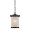 "Nuvo 62-645 Diego 1-lt 9"" LED Outdoor Hanging Lantern"