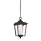 "Nuvo 62-824 Essex 1-lt 8"" LED Outdoor Hanging Lantern"