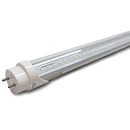 Westgate 2-Ft 15W T8 LED Tube Clear Glass - 5000K