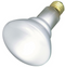 Satco S4887 65W BR30 Frost Shatter Proof Incandescent Bulb