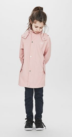 Raincoat Coast  Rose