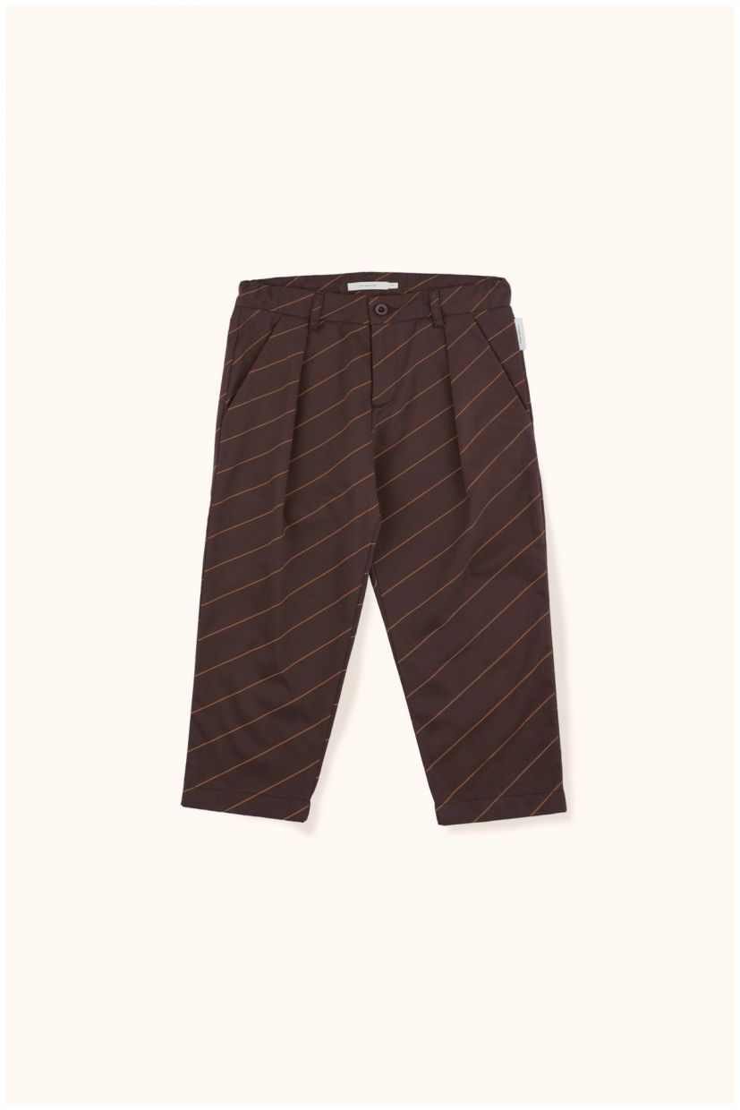 Diagonal Stripe Trousers