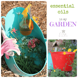 Essential Oils for the Potting Bench