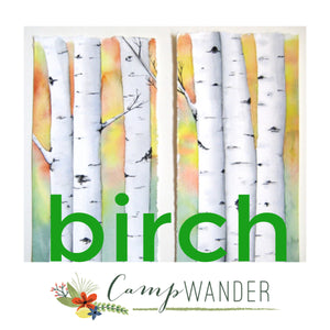 Birch Magic Bullet