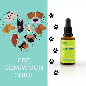 The CBD Canine Companion Guide