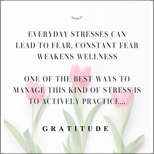 Tone Your Vagus Nerve with Gratitude