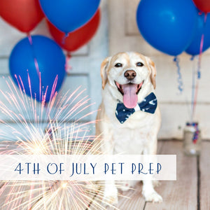 july-fourth-pet-tips