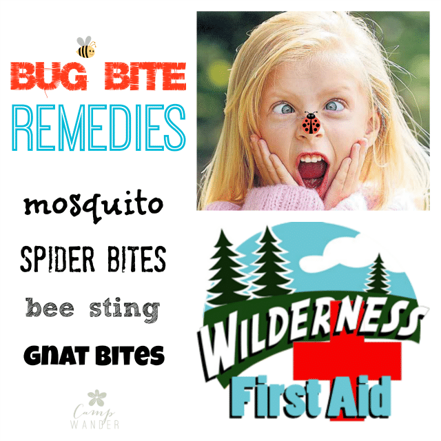 Essential oil Bug bite remedies - Mosquito, Spider bites, bee sting, gnat bites. Wilderness first aid