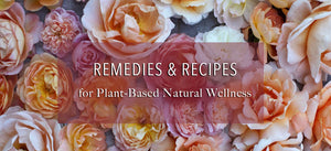 Essential Oil Blog Remedies and Recipes for Plant Based Natural Wellness