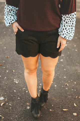 Suede Scalloped Shorts (Black)