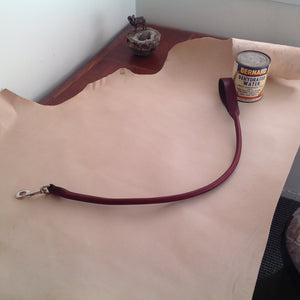 "38"" Pet Leash"