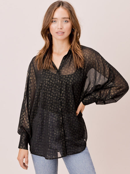 Kaiden Relaxed Sheer Button Down Blouse