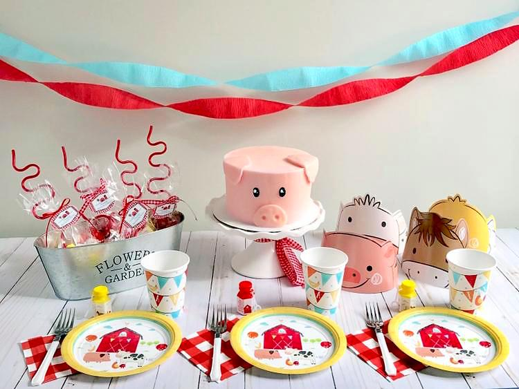 Little Farmer Birthday Party Box