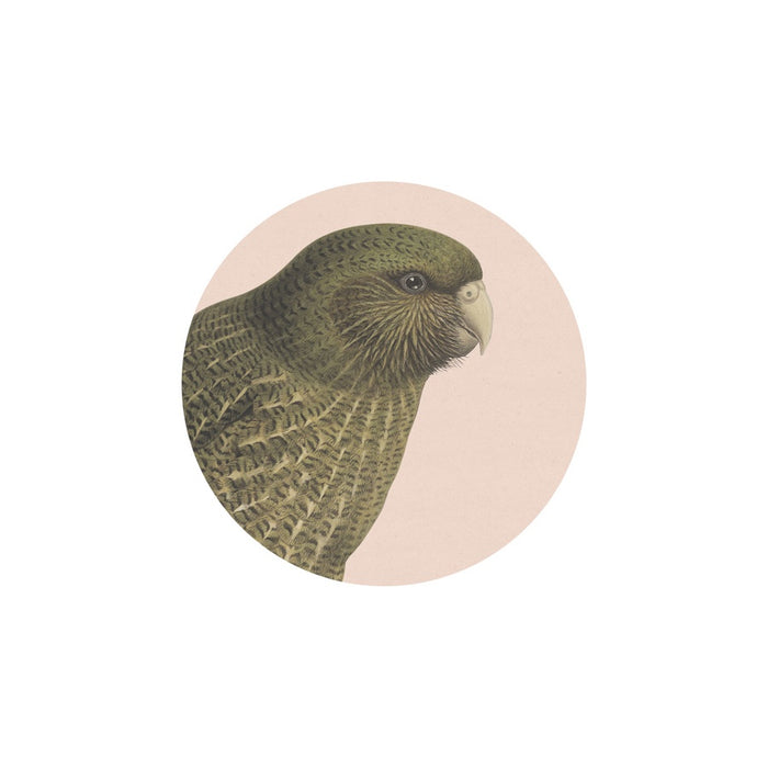 Coaster Hushed Kakapo