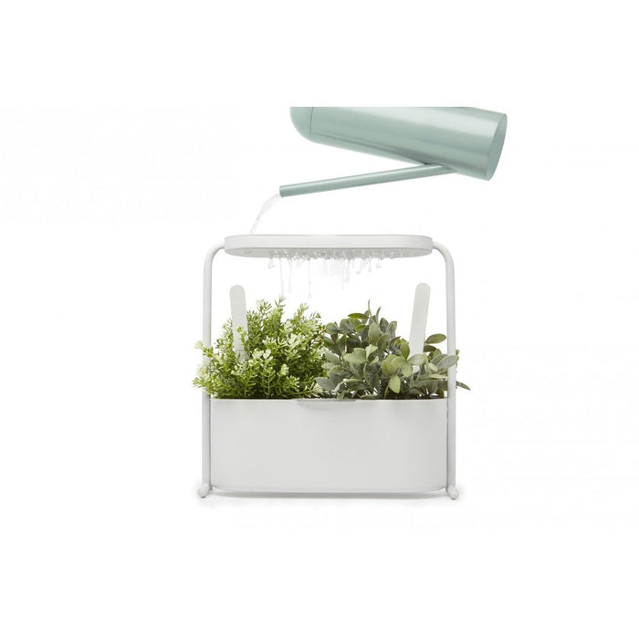 Giardino indoor herb set
