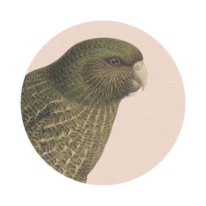 Hushed Kakapo placemat