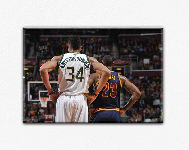 Giannis Antetokounmpo Lebron James