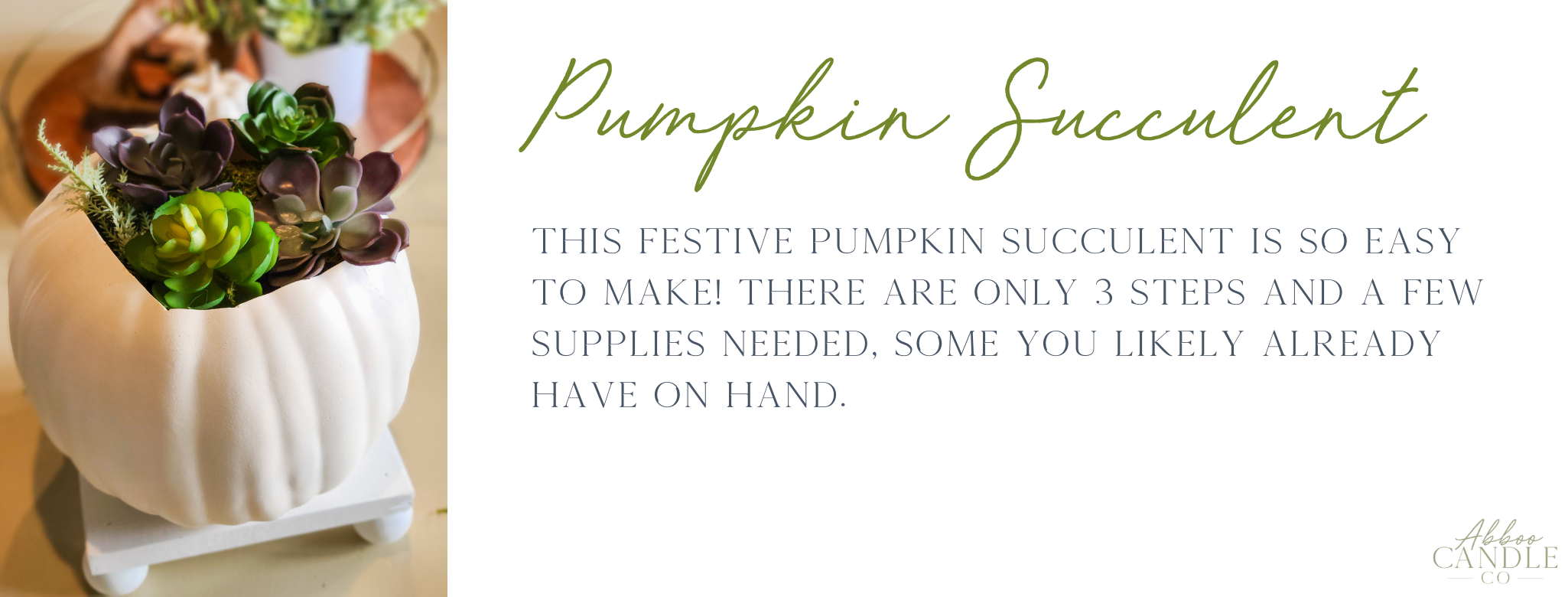 how to make a pumpkin succulent by abboo candle co